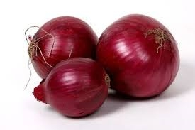 onion, red-1