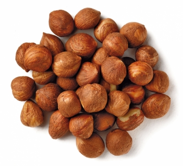 nut,hazelnut-1