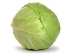 cabbage, green-1