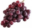 grape, red (seedless)