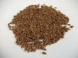 seed, brown flax