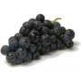 grape, black  (seedless)